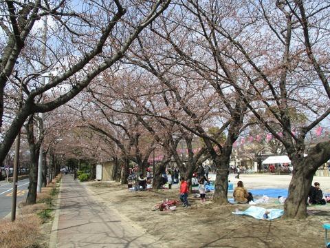 52宇喜田さくら公園3