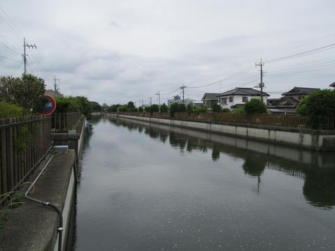 46菖蒲橋2