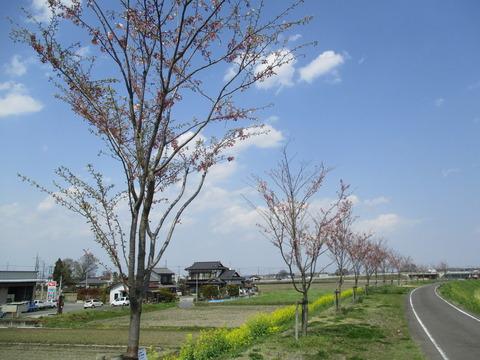 144萩島地域2