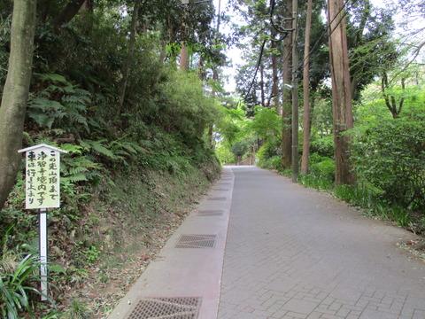 09舗装道路