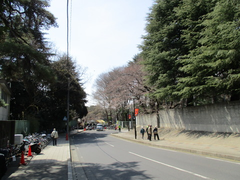 102再び大宮公園1