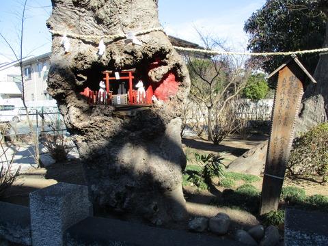 45欅稲荷1
