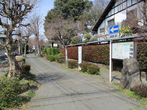 117盆栽村入口