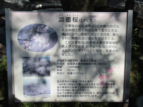 05小金井駅2