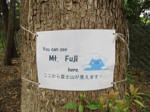 57富士山ビューポイント1