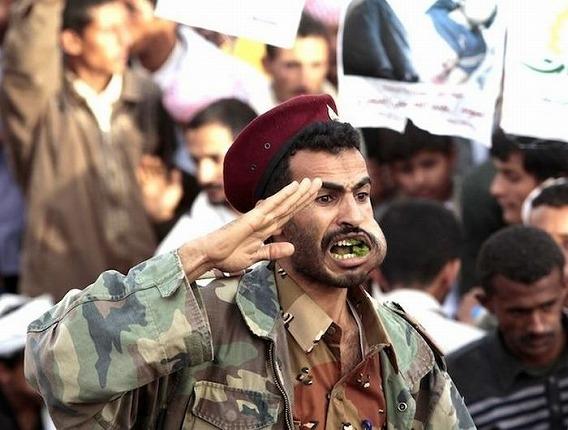 qat_yemen_15