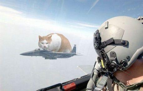 hilarious_army_photos_13