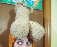 ペニス帽子
