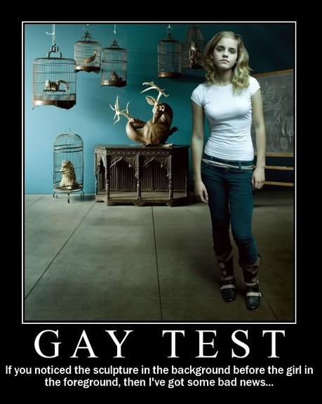 gay-test-3
