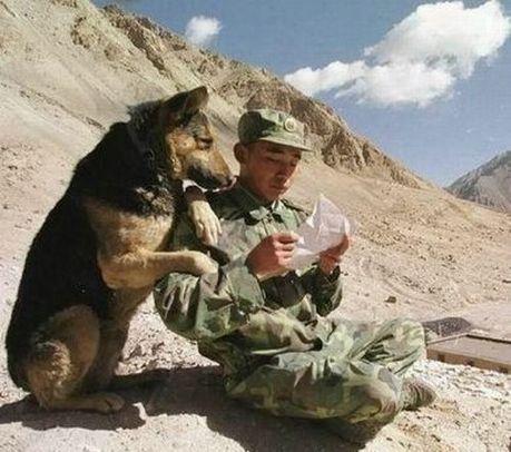 hilarious_army_photos_28