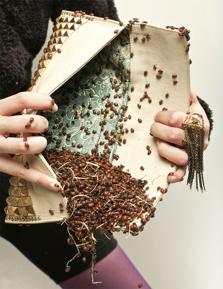 ladybug-purse