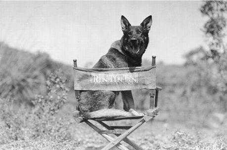 hollywood_11