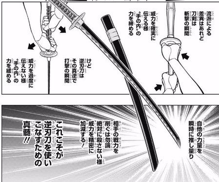 逆刃刀 (2)