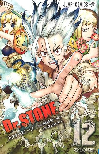 drstone012