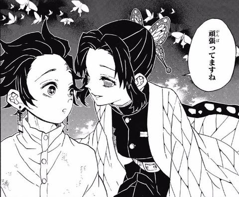 しのぶ (11)