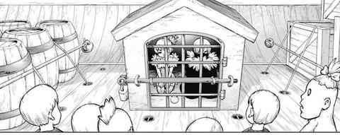 e0482cfe s - 【Dr.STONE100話感想】新章開幕!!人類を救い出す航海の旅へ!!