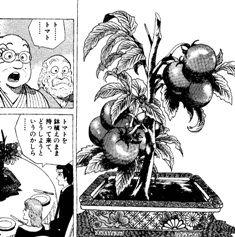 e8f7a6c6 - 【トリコ291話感想】トリコのフルコース「サラダ」が決定!!!!