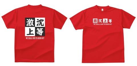 20161029Tシャツ
