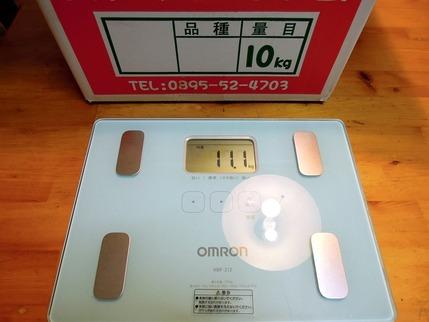 吉田みかん10kg