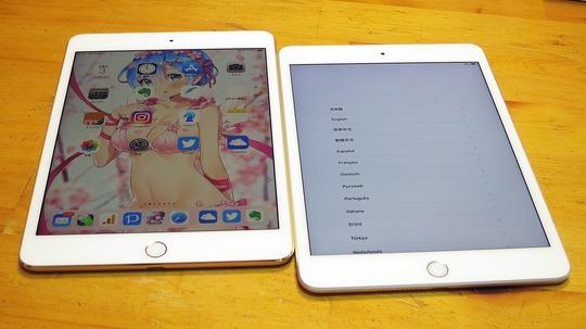 新型iPad mini and iPad mini 4