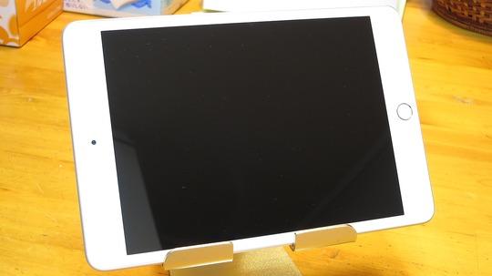 2019 第5世代iPad mini無印 液晶保護パネル装着済