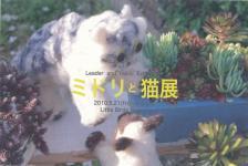 ミドリと猫展01s