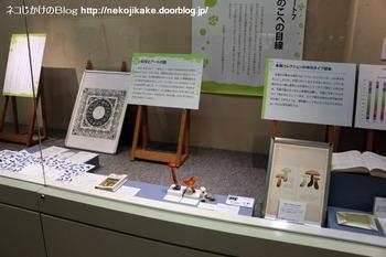 2018102117きのこ!キノコ!木の子!@大阪市立自然史博物館。13