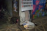 町猫2012DM