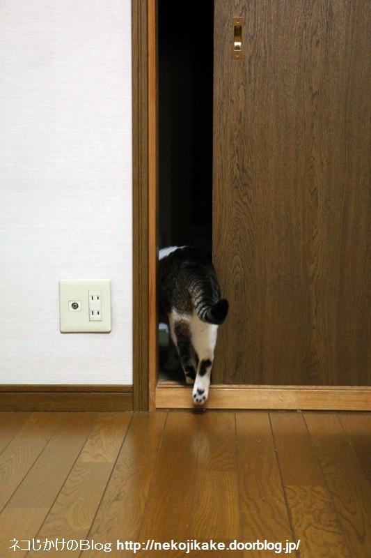 2015071002どんなドアもおしりがつっかえない。2