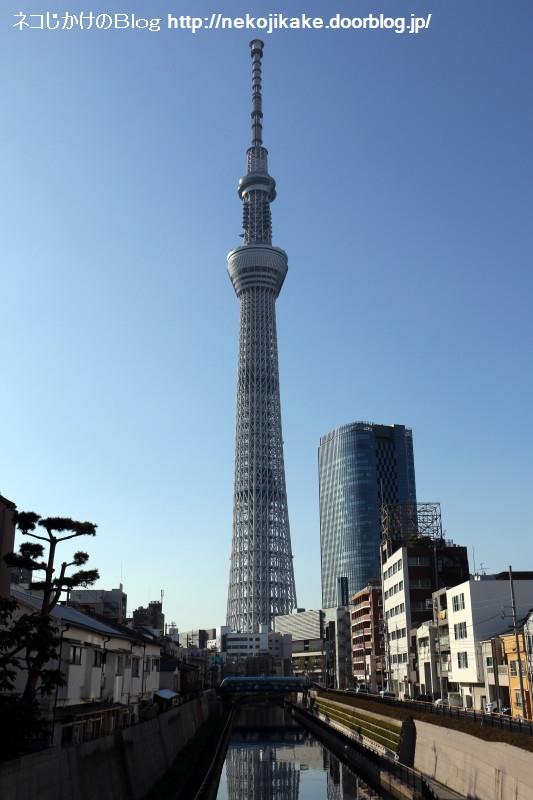 2019110913東京スカイツリー。2