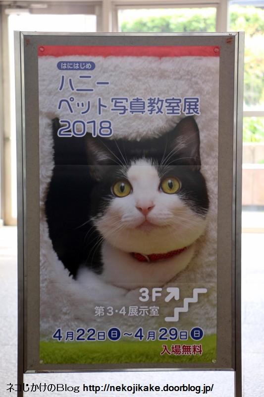 2018042204八二一ペット写真教室展2018看板。