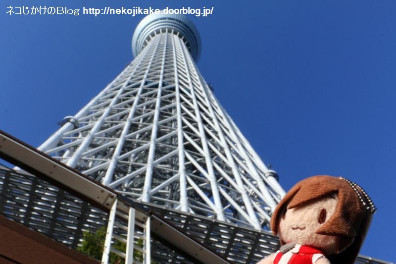 2019110918目指すは世界一の高い塔。2