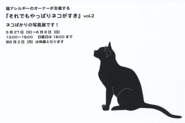 それでもやっぱりネコがすきvol2DM11