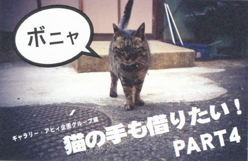 猫の手も借りたい!PART4DM3