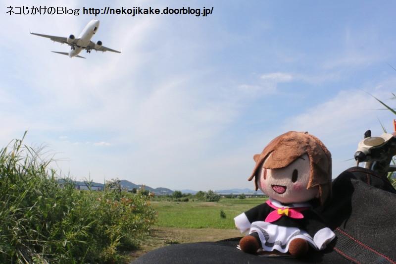 2018052204空を自由に飛びたいな。1