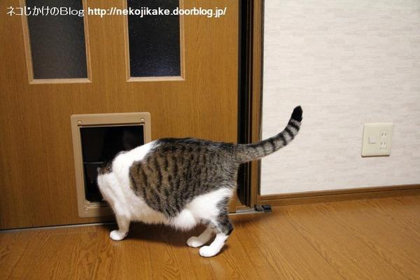 2014092503あ、こっちにもドアがあった。