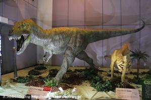 2017073007メガ恐竜展201@ 大阪南港ATCホール。5