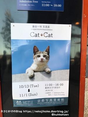 2020102514写真展「fractale」・「Cat・Cat」@京都写真美術館_ギ2
