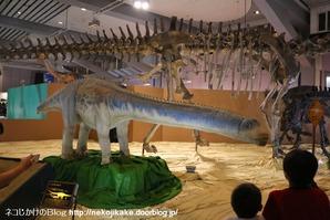 2017073022メガ恐竜展201@ 大阪南港ATCホール。20