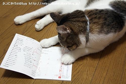 猫ふん2011スタンプラリー制覇しました。