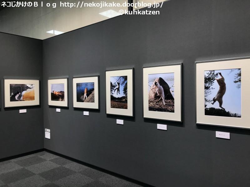 2019122103HIKO YOKO 写真展@富士フイルムフォトサロン大阪。2