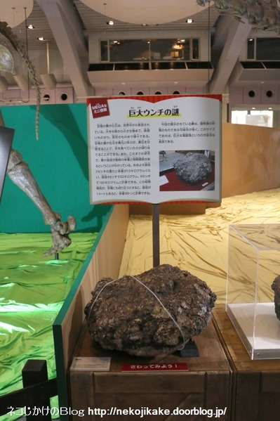 2017073026メガ恐竜展201@ 大阪南港ATCホール。24