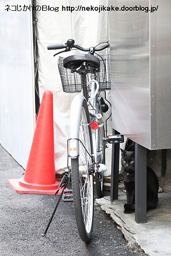 自転車こんなとこ置いたらあかん。