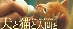 映画「犬と猫と人間と」 バナー