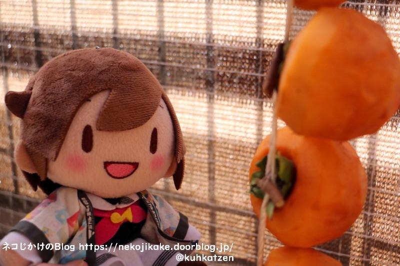 2020111005干し柿あります。2