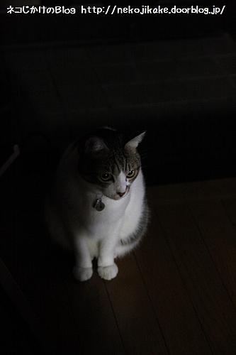 暗い部屋で一人・・・