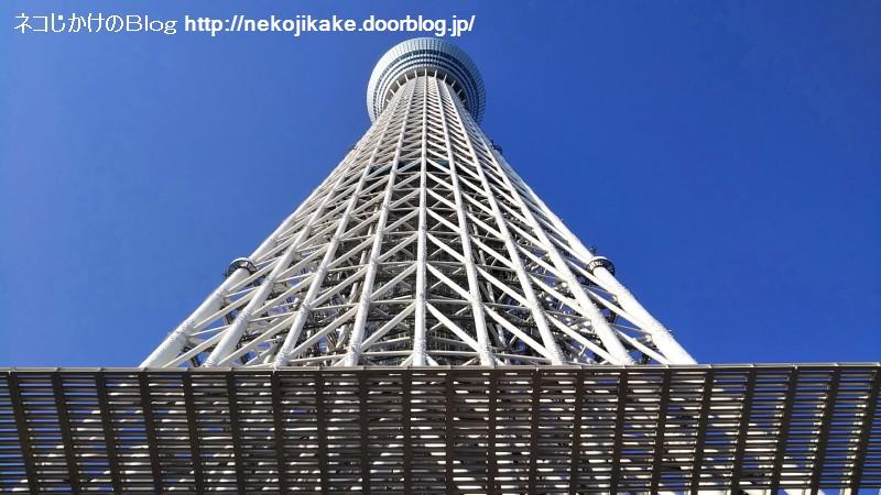 2019110916東京スカイツリー。5