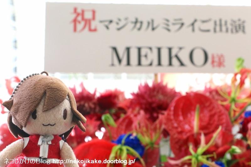 2019080934MEIKOのお花と一緒。1