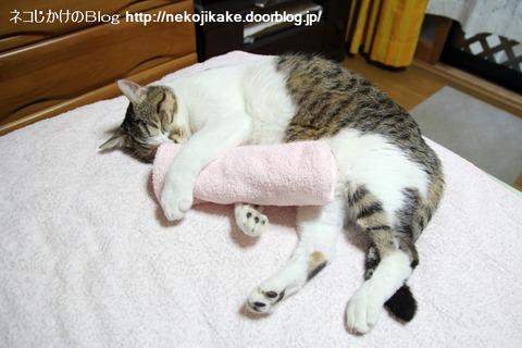 2013052601抱き枕。