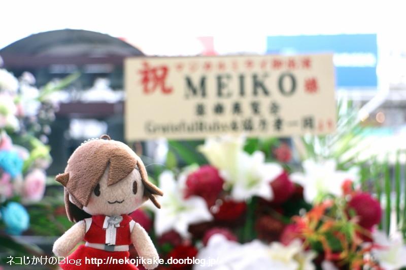 2019080935MEIKOのお花と一緒。2